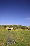 Israel, Shephelah, a view of Tel Goded