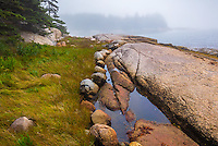 Deer Isle, Maine: Fog on a rocky shoreline of Jericho Bay