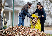 STAFF PHOTO JASON IVESTER --12/13/2014--<br /> Natalia Sandhu (cq) (left), and Daniela Jimenez, both Rogers Heritage freshmen, bag raked leaves at a residence near the school on Saturday, Dec. 13, 2014, as part of the school's Community Leaf Removal Day.