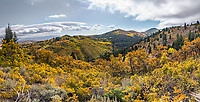 I love fall colors, but I never feel like a photography comes close to representing the beauty.  This one from Park City comes closer than most of my attempts.