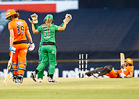 2nd November 2019; Western Australia Cricket Association Ground, Perth, Western Australia, Australia; Womens Big Bash League Cricket, Perth Scorchers versus Melbourne Stars; Katey Martin and Madeline Penna of the Melbourne Stars celebrate the wicket of Meg Lanning - Editorial Use