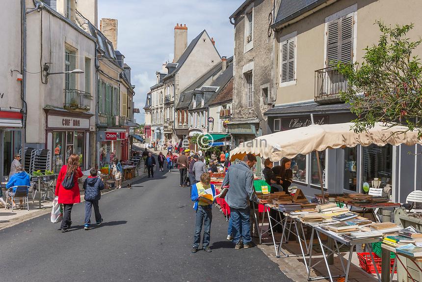 France, Nièvre (58), Réserve naturelle nationale du Val de Loire, La Charité-sur-Loire, foire aux livres