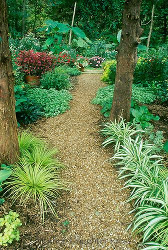 Garden Path Through Forest Mother Daughter Press
