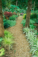 Garden path with pea gravel through shade garden for easy access and care