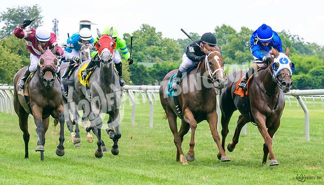 Molly O'Shea winning at Delaware Park on 7/1/17