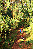 Hiker on Makiki trail, Tantalus, Oahu