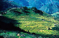 .Sculptured rice-fields above the Marsyandi valley, west-central Nepal...