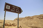 Nahal Tamar in the Negev