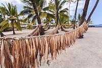 Ti (Ki) leaves hanging on hukilau rope in Pu'uhonua o Honaunau place of refuge national historical park, Big Island, Hawaii