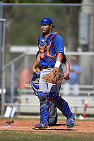 New York Mets catcher Brandon Brosher (15) during a minor league spring training game against the Miami Marlins on March 30, 2015 at the Roger Dean Complex in Jupiter, Florida.  (Mike Janes/Four Seam Images)