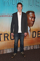 LOS ANGELES, CA - JANUARY 10: James Tupper at the Los Angeles Premiere of HBO's True Detective Season 3 at the Directors Guild Of America in Los Angeles, California on January 10, 2019.   <br /> CAP/MPI/FS<br /> ©FS/MPI/Capital Pictures