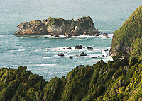 Arnott Point near Haast, UNESCO World Heritage Area, South Westland, New Zealand, NZ