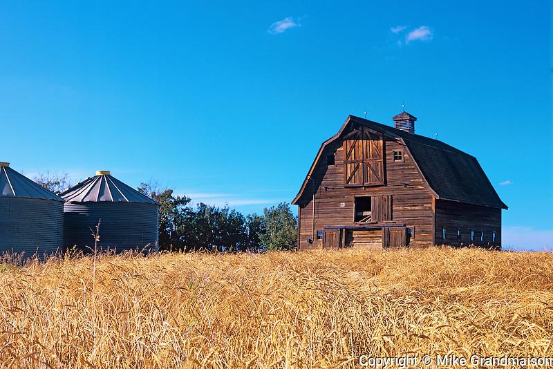 Old barn<br /> Turtleford<br /> Saskatchewan<br /> Canada
