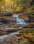 Ricketts Glen State Park, PA: A small waterfall on Kitchen Creek in autumn