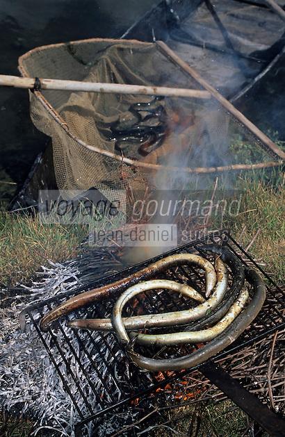 Europe/France/Pays de la Loire/85/Vendée/Marais breton-vendéen/Centre du Daviaud/La Barre-de-Monts: Anguilles du marais grillées