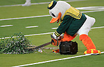 10/02/10-- The Duck mascot pretends to use a chainsaw to cut a tree in half which is Cardinals' mascot after Oregon defeated Stanford 52-31 at Autzen Stadium in Eugene, Or..Photo by Jaime Valdez........