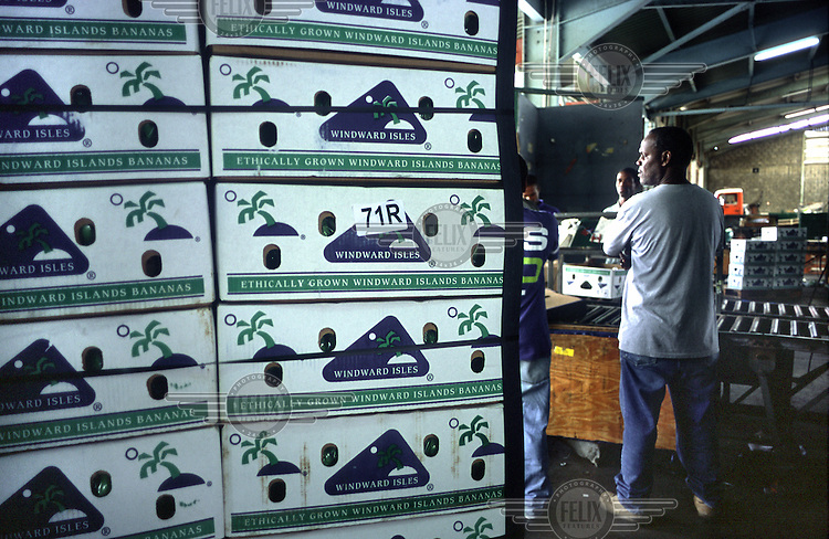 Philip Wolmuth/Panos Pictures..DOMINICA..Boxes of bananas destined for Marks&Spencer (coded 71R) await shipment to the UK at the deep water harbour in Roseau.  Each farmer's boxes, bagged and boxed differently for each of the UK supermarkets, are checked for quality on delivery and can be rejected if packed incorrectly..