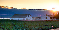 Twilight sunset at Huntington Farms, Salinas Valley, California farm fields