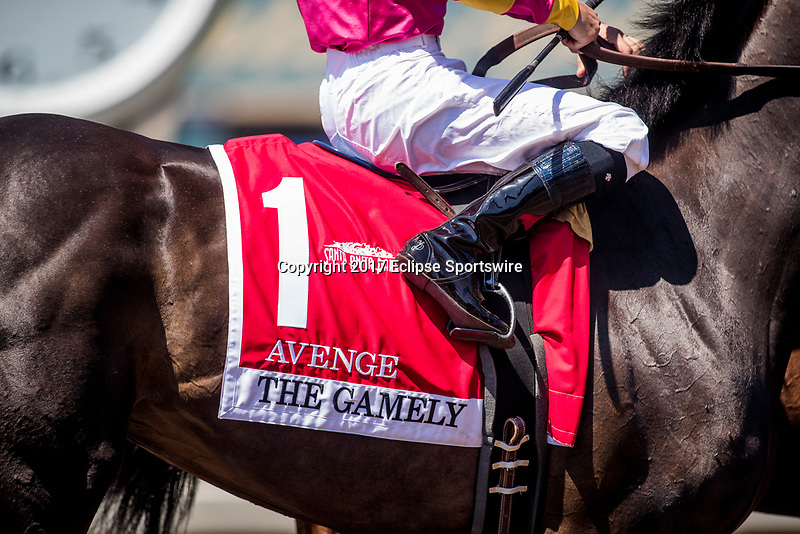 ARCADIA, CA - MAY 27: Avenge's Saddle Cloth before the Gamely at  Santa Anita Park  on May 27, 2017 in Arcadia, California. (Photo by Alex Evers/Eclipse Sportswire/Getty Images)