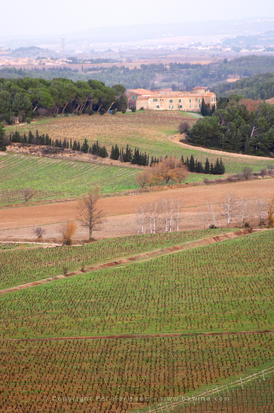 Chateau Pech-Latt. Near Ribaute. Les Corbieres. Languedoc. The winery building. The vineyard. France. Europe.