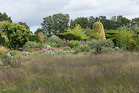 Mature borders are planted behind a wildflower meadow at Great Dixter