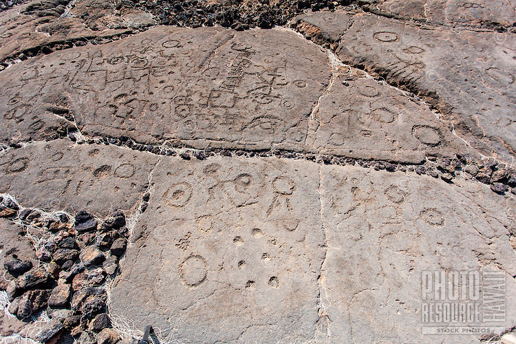 Petroglyphs or ki'i pohaku at the Waikoloa Petroglyph Field (a.k.a. 'Anaeho'omalu Petroglyph Field), Big Island.