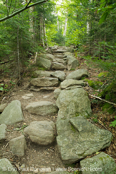 Stone steps along the Valley Way Trail in the White Mountains of New Hampshire USA.