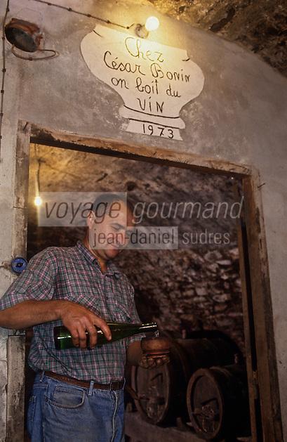 Europe/Italie/Val d'Aoste/Arnad: Chez César Bonin, viticulteur