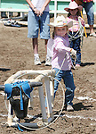 Jayden Jensen ropes the cow in the Pee-Wee Dummy Roping event at the Fallon Junior Rodeo.  Photo by Tom Smedes.