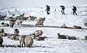 12/02/18<br /> <br /> Hikers walk in the snow near Castleton in the Derbyshire Peak District.<br /> <br /> All Rights Reserved F Stop Press Ltd. +44 (0)1335 344240 +44 (0)7765 242650  www.fstoppress.com