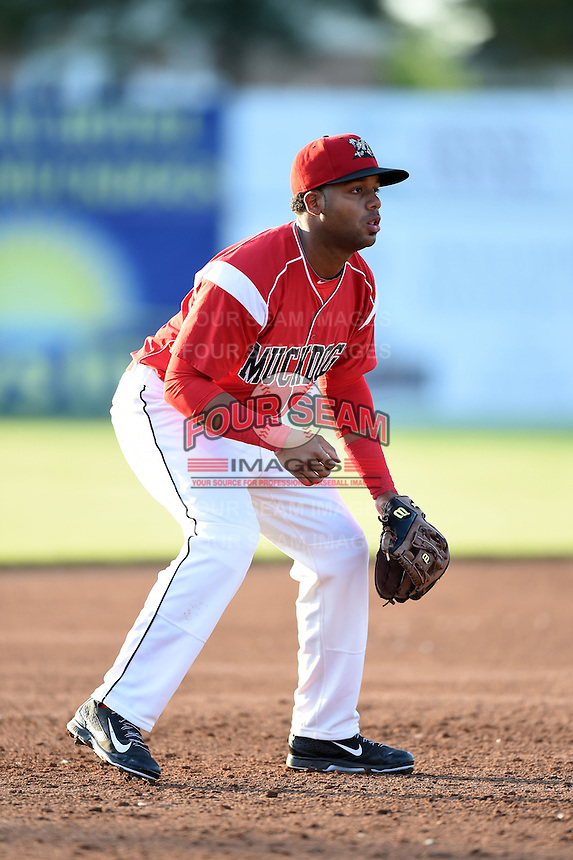 Batavia Muckdogs third baseman Christian Rivera (5) during a game against the Auburn Doubledays on June 14, 2014 at Dwyer Stadium in Batavia, New York.  Batavia defeated Auburn 7-2.  (Mike Janes/Four Seam Images)