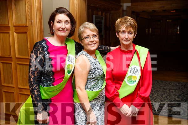 Margaret Lyons, Angela Moloney, and Lou Irwin, pictured at the Irish Guide Dogs fundraiser dance at the Meadowlands Hotel, Tralee on Saturday night last.