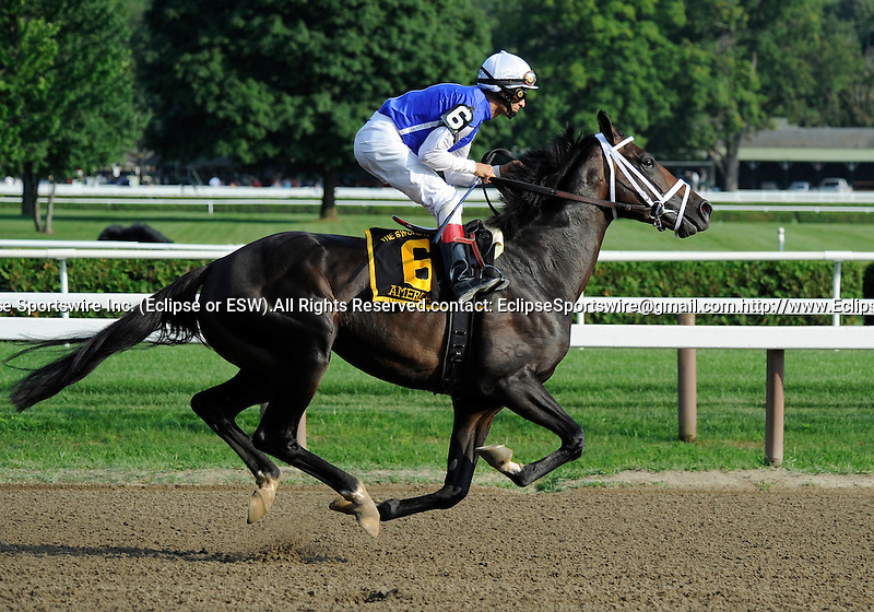 09 August 15: Americain prior to the running of the grade 1 Sword Dancer Invitational for three year olds and upward at Saratoga Race Track in Saratoga Springs, New York.
