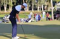 Justin Rose (ENG) putts on the 17th green during Sunday's Final Round of the 2018 Turkish Airlines Open hosted by Regnum Carya Golf &amp; Spa Resort, Antalya, Turkey. 4th November 2018.<br /> Picture: Eoin Clarke | Golffile<br /> <br /> <br /> All photos usage must carry mandatory copyright credit (&copy; Golffile | Eoin Clarke)