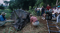 Jurassic Park (1993)<br /> Behind the scenes photo of Laura Dern, Steven Spielberg &amp; Sam Neill<br /> *Filmstill - Editorial Use Only*<br /> CAP/KFS<br /> Image supplied by Capital Pictures