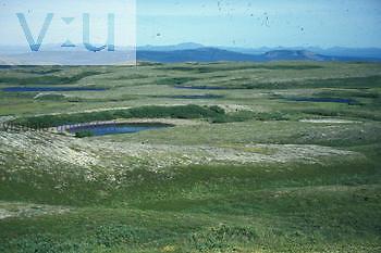 Tundra covered glacial moraines. Alaska