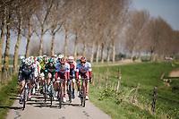 Marcel Kittel (DEU/Katusha - Alpecin) still active in the first echelon<br /> <br /> 107th Scheldeprijs (1.HC)<br /> One day race from Terneuzen (NED) to Schoten (BEL): 202km<br /> <br /> ©kramon