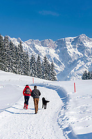 Oesterreich, Salzburger Land, Pinzgau, Maria Alm: Winterspaziergang auf der Jufenalm vorm Hochkoenig | Austria, Salzburger Land, Pinzgau, Maria Alm: winter walk at Jufenalm, at background Hochkoenig mountains