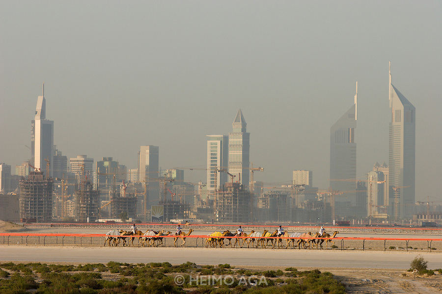 Dubai Camel Race Course, Sheikh Zayed Road skyline.
