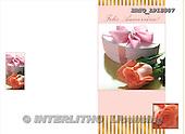 Alfredo, FLOWERS, photos, BRTOLP15807,#F# Blumen, flores