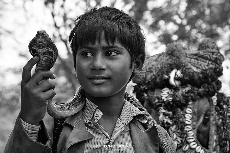 Gypsy Snake Charmer. Gypsy village near Radha Kund, Uttar Pradesh, India.