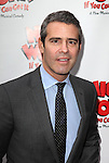 Andy Cohen.attending the Broadway Opening Night Performance of 'Nice Work If You Can Get it' at the Imperial Theatre on 4/24/2012 at the Imperial Theatre in New York City. © Walter McBride/WM Photography .