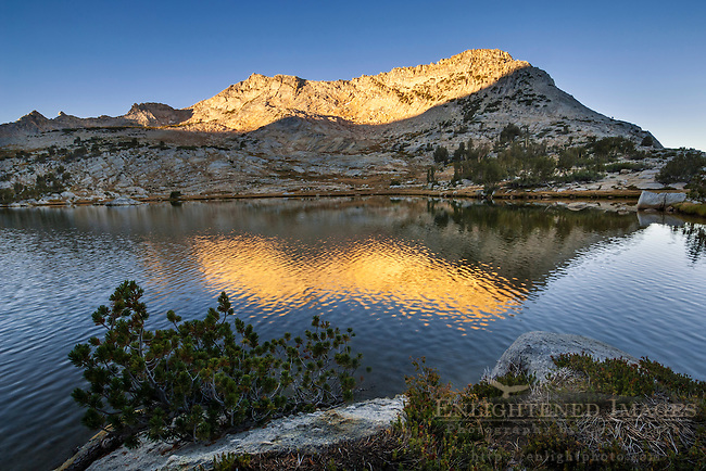 Morning light on Vogelsang Peak reflected in Vogelsang Lake; Yosemite National Park; California