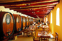 South Africa, Cape Town, Winelands, Franschhoek, wine growing estate L'Ormarins - tasting room