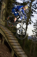 Freeride Track , Glentress .Scotland  April 2007.pic copyright Steve Behr / Stockfile