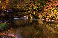 Horseshoe Falls and the Rotten Calder in autumn, Calderglen Country Park, East Kilbride, South Lanarkshire