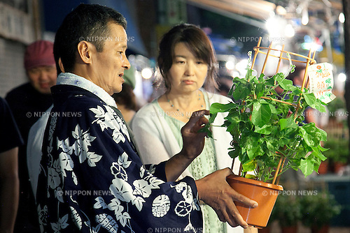 "July 8, 2014, Tokyo, Japan - A vendor shows his plant to customer at the ""Iriya Asagao-ichi Market Festival"" on July 8, 2014. The market festival was the most famous for asagao plants (morning glories) in Edo period, and has been held on July 6, 7, and 8 at the Temple of Iriya Kishimojin in Tokyo every year since late Edo period. The flower was introduced into Japan 1200 year ago from China for medical uses. (Photo by Rodrigo Reyes Marin/AFLO)"