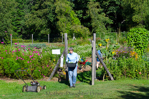 Woman carries harvest from Community garden on summer morning, Maine, USA