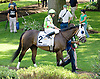 Coax Liberty before The Sweet and Sassy Stakes at Delaware Park on 6/23/12
