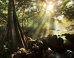 Hillsborough River State Park, Florida